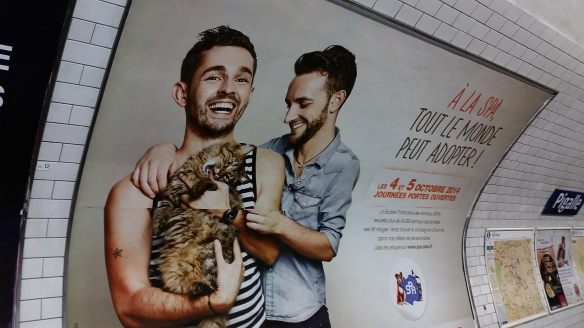 campagne animaux adoption